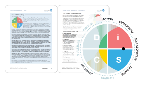 disc assessment report